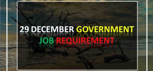 29 December government job requirement