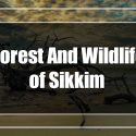 Forest And Wildlife of Sikkim