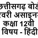 cg board class 12 hindi february assignment